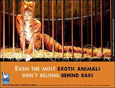 Sheryl Lee PETA ad